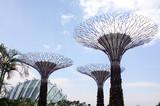 平常新加坡