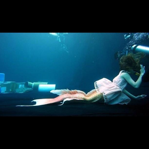 最美丽危险的美人鱼                     鱼2012的问题>>