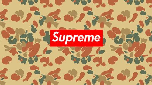 supreme壁纸