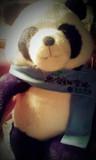 熊猫 From 帕拉多克斯