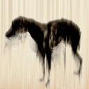 黑狗成(1980549)